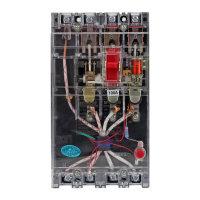 利百加 透明漏电DZ15LE-100T/3N901型