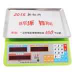 永州 充电式电子秤983型(干充两用)