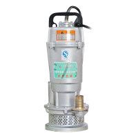 人民 轻型潜水泵220V