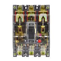 德力西DELIXI 透明塑壳断路器CDM10-100T/3300型
