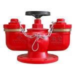 鼎梁DL 多用式地下水泵接合器